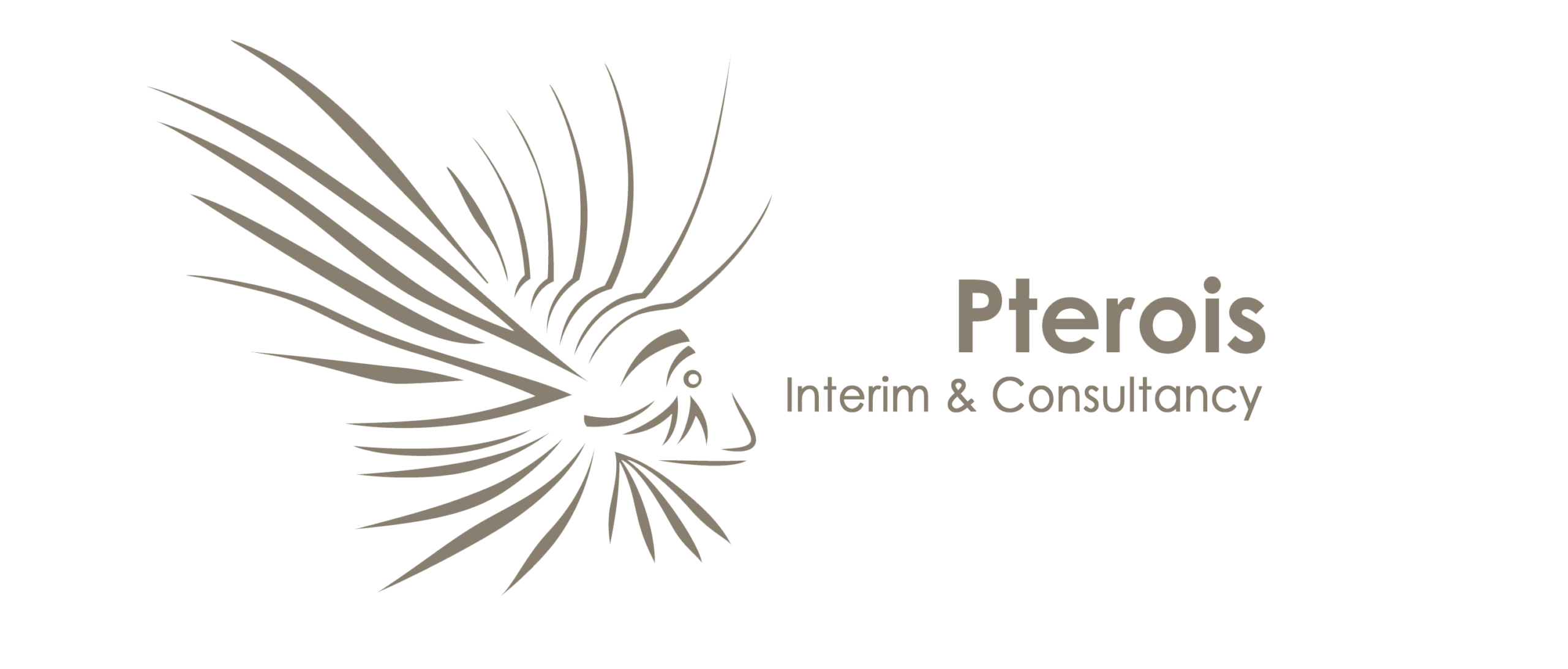 Pterois Interim & Consultancy